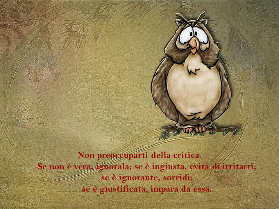 Non preoccuparti della critica.