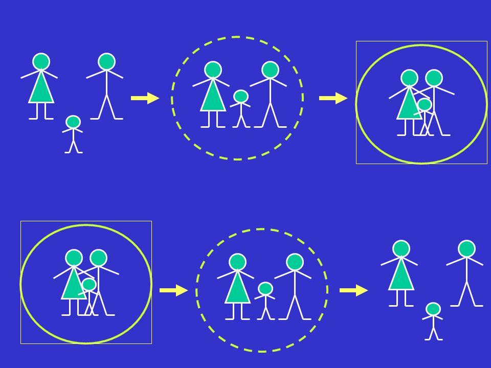 Struttura della famiglia Inversione dei ruoli generazionali