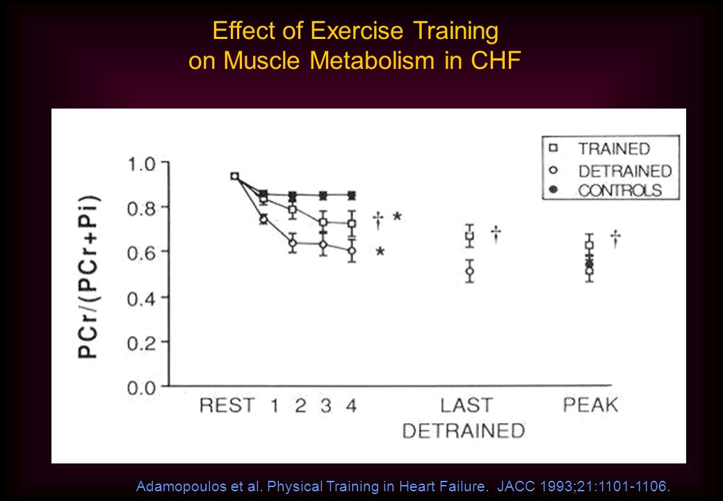 Effect of Exercise Training on Muscle Metabolism in CHF Adamopoulos et al.