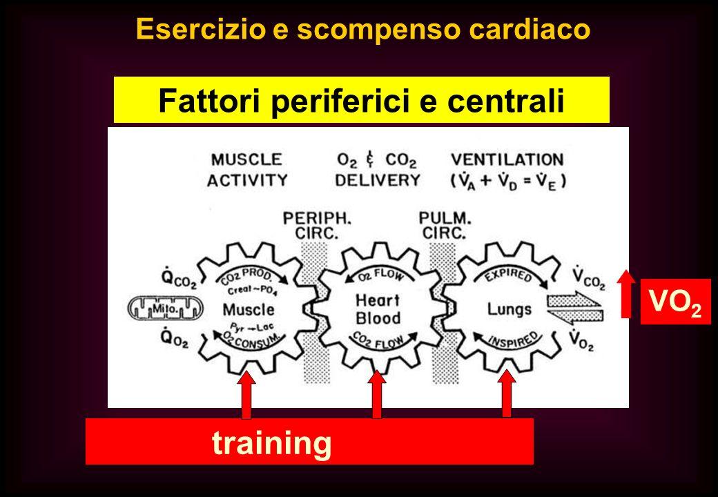 training VO 2 Esercizio e scompenso cardiaco Fattori periferici e centrali