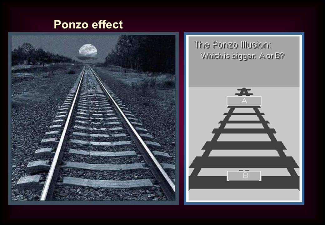 Ponzo effect