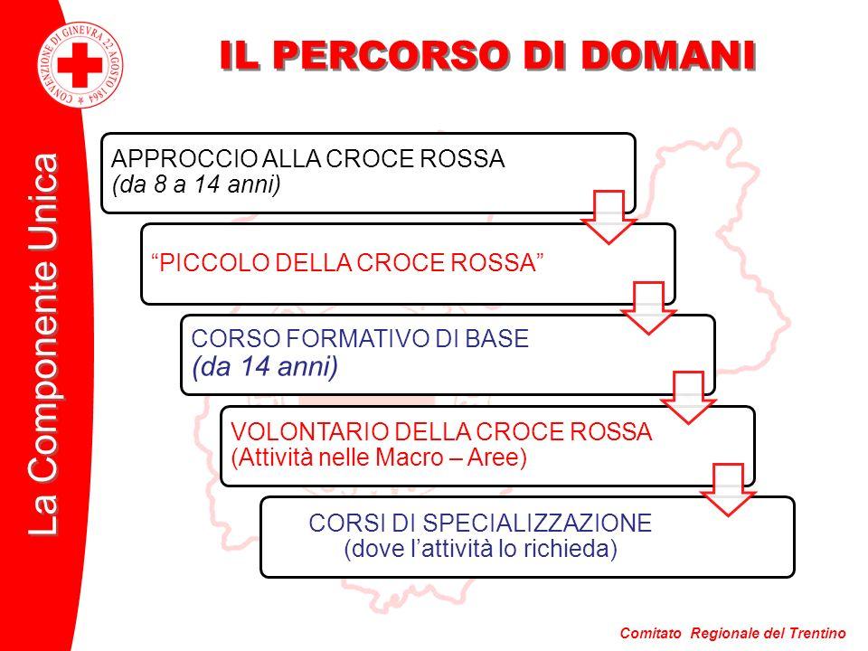 Comitato Regionale del Trentino La Componente Unica IL PERCORSO DI DOMANI APPROCCIO ALLA CROCE ROSSA (da 8 a 14 anni) PICCOLO DELLA CROCE ROSSA CORSO