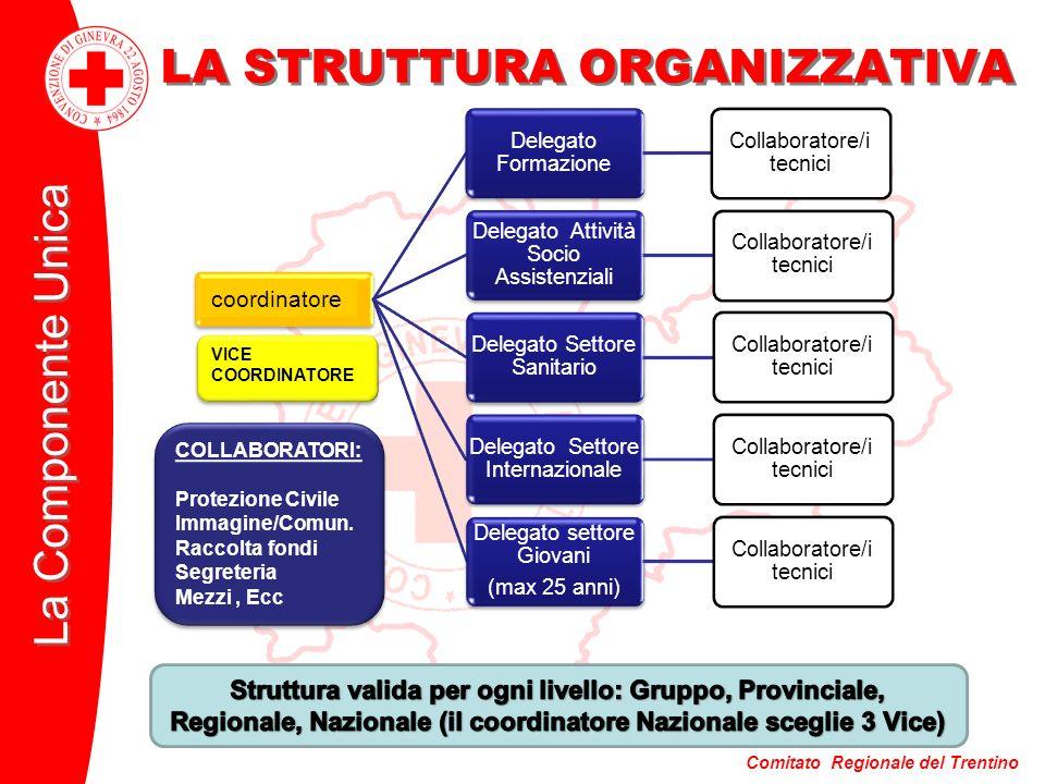 Comitato Regionale del Trentino La Componente Unica LA STRUTTURA ORGANIZZATIVA ISPETTORE Delegato Formazione Collaboratore/i tecnici Delegato Attività