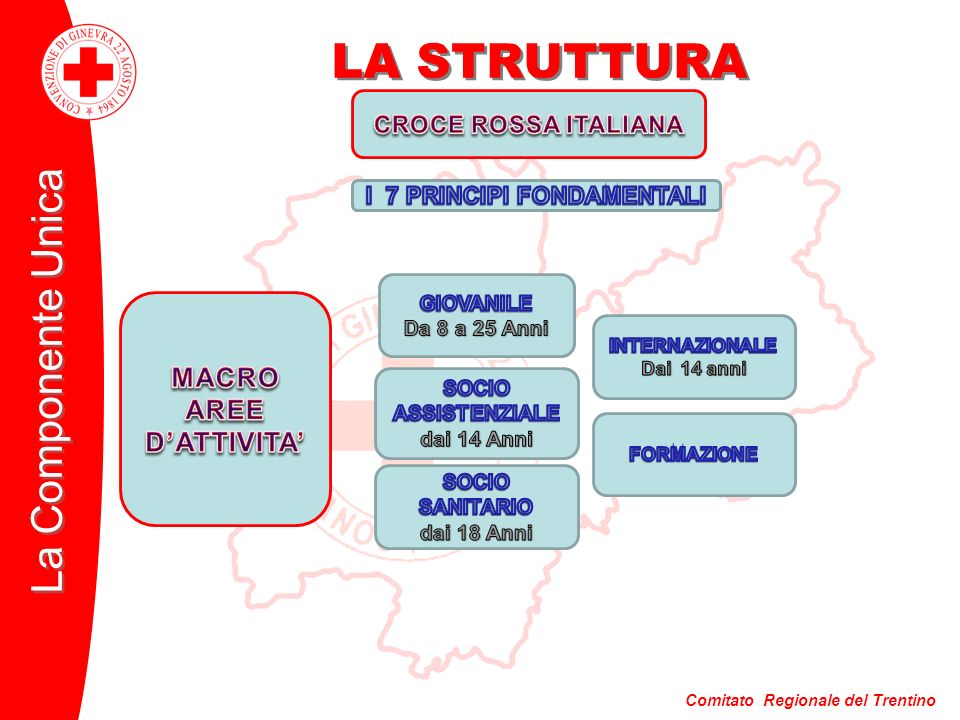 Comitato Regionale del Trentino La Componente Unica LA STRUTTURA DIRITTO INTERNAZIONALE UMANITARIO AIUTI INTERVENTI ALLESTERO MISSIONI E PROGETTI DIVULGAZIONE PROGETTI CRI INTERNAZIONALE AGENZIA CENTRALE RICERCHE COOPERAZIONE CON CONSORELLE C.R.