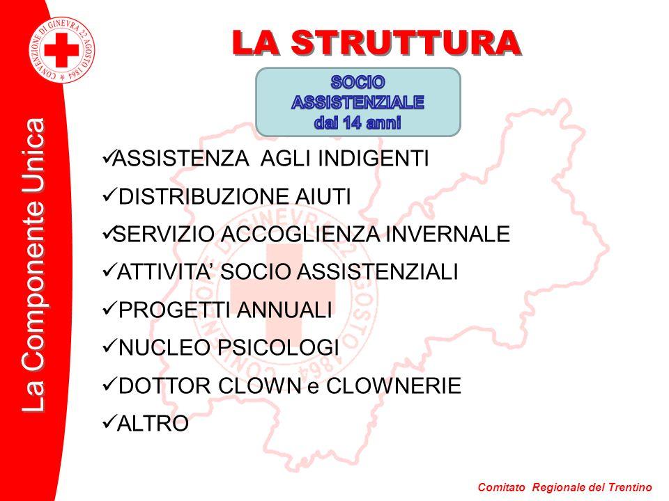 Comitato Regionale del Trentino La Componente Unica LA STRUTTURA ASSISTENZA AGLI INDIGENTI DISTRIBUZIONE AIUTI SERVIZIO ACCOGLIENZA INVERNALE ATTIVITA SOCIO ASSISTENZIALI PROGETTI ANNUALI NUCLEO PSICOLOGI DOTTOR CLOWN e CLOWNERIE ALTRO