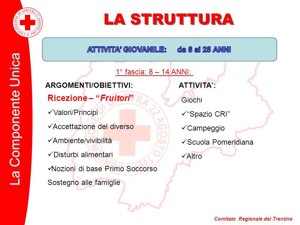 Comitato Regionale del Trentino La Componente Unica LA STRUTTURA ARGOMENTI/OBIETTIVI:ATTIVITA: Giochi Spazio CRI Campeggio Scuola Pomeridiana Altro Ri