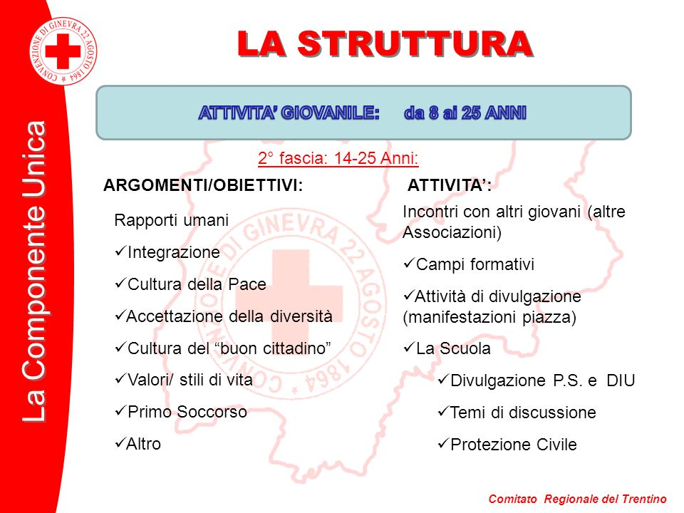 Comitato Regionale del Trentino La Componente Unica LA STRUTTURA Incontri con altri giovani (altre Associazioni) Campi formativi Attività di divulgazione (manifestazioni piazza) La Scuola Divulgazione P.S.