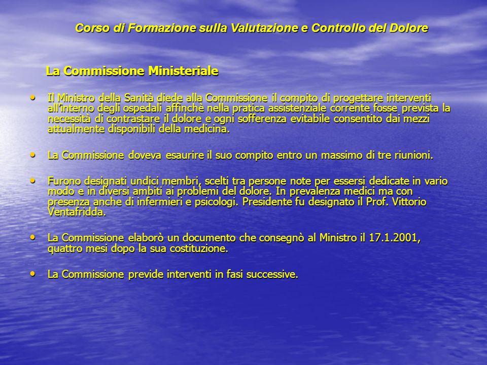 La Commissione Ministeriale La Commissione Ministeriale Il Ministro della Sanità diede alla Commissione il compito di progettare interventi allinterno