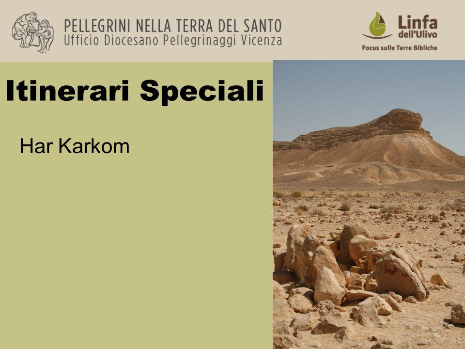Itinerari Speciali Har Karkom