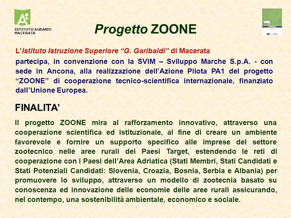 Progetto ZOONE LIstituto Istruzione Superiore G. Garibaldi di Macerata partecipa, in convenzione con la SVIM – Sviluppo Marche S.p.A. - con sede in An