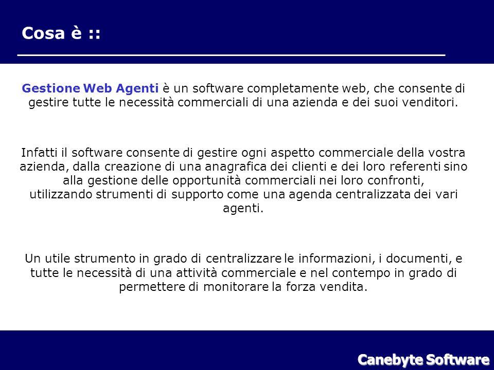 Cosa è :: Gestione Web Agenti è un software completamente web, che consente di gestire tutte le necessità commerciali di una azienda e dei suoi vendit