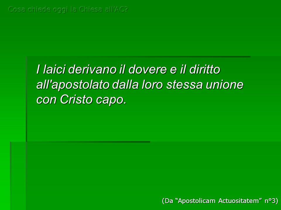 I laici derivano il dovere e il diritto all'apostolato dalla loro stessa unione con Cristo capo. (Da Apostolicam Actuositatem n°3)