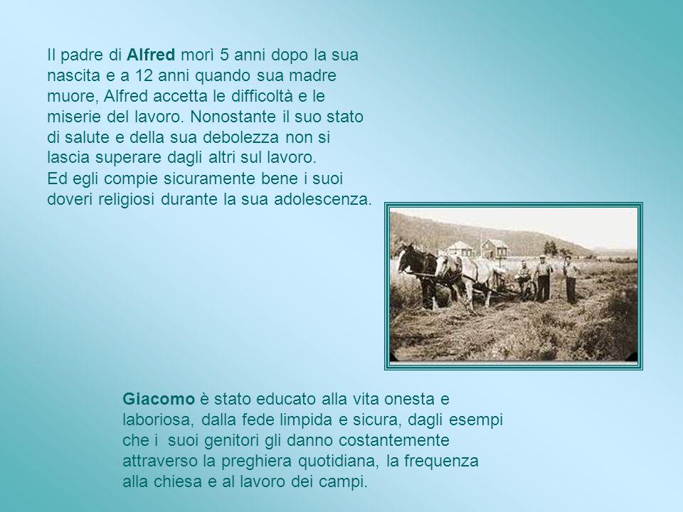 Alla piccola scuola, Alfred ha imparato qualcosa. Sa leggere e si perfeziona lui stesso con la pratica. Giacomo ha 6 anni, frequenta la scuola element