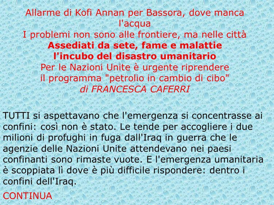 Allarme di Kofi Annan per Bassora, dove manca l'acqua I problemi non sono alle frontiere, ma nelle città Assediati da sete, fame e malattie l'incubo d