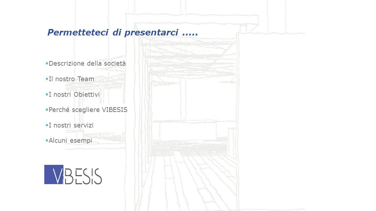 Permetteteci di presentarci..... Descrizione della società Il nostro Team I nostri Obiettivi Perché scegliere VIBESIS I nostri servizi Alcuni esempi