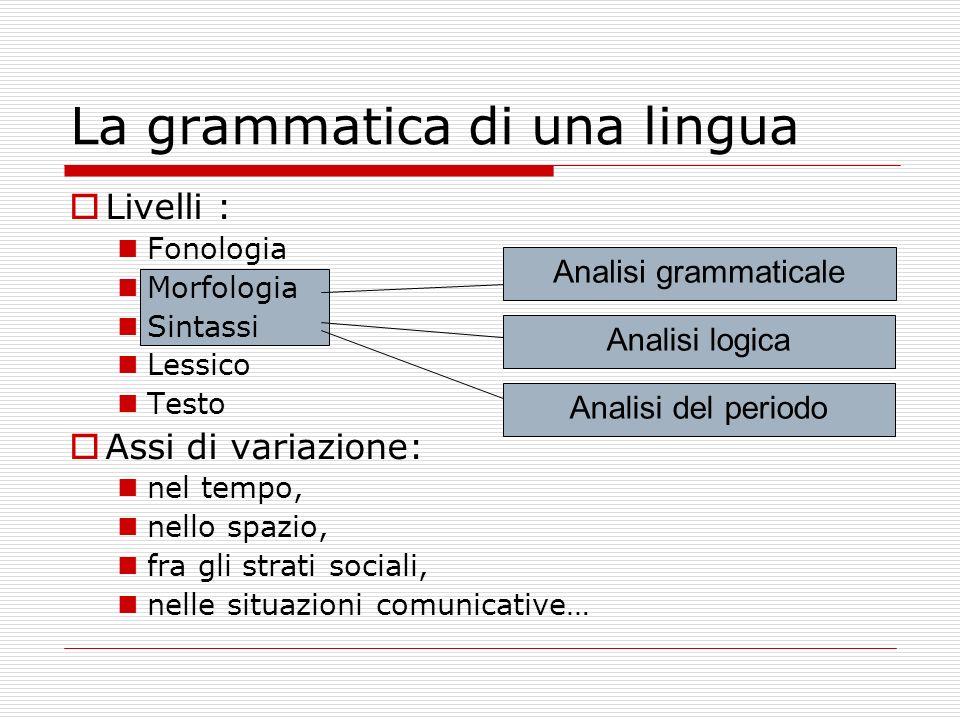 La grammatica di una lingua Analisi grammaticale Analisi logica Analisi del periodo Livelli : Fonologia Morfologia Sintassi Lessico Testo Assi di vari