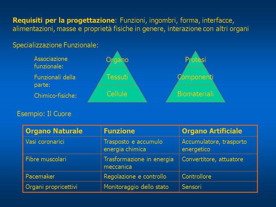 Requisiti per la progettazione: Funzioni, ingombri, forma, interfacce, alimentazioni, masse e proprietà fisiche in genere, interazione con altri organ