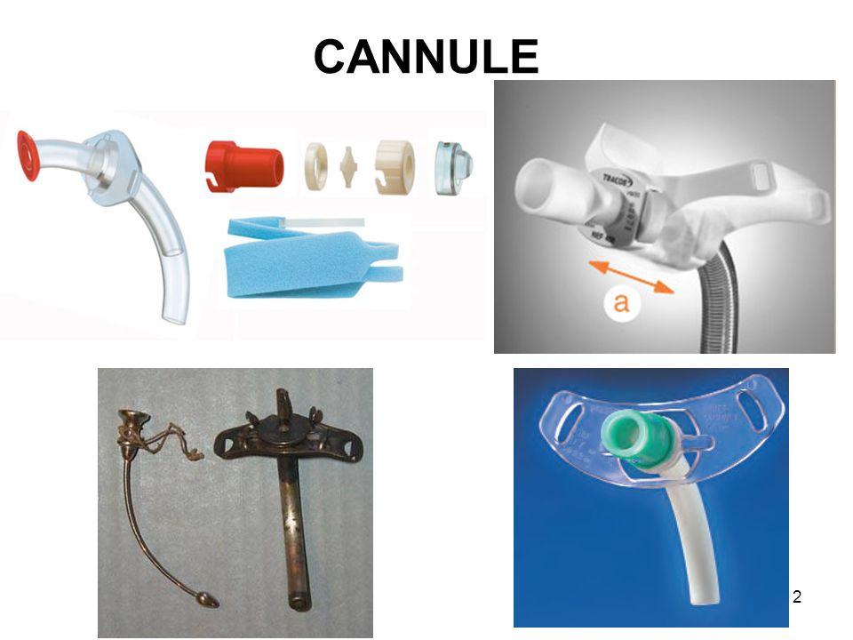 CANNULE 2