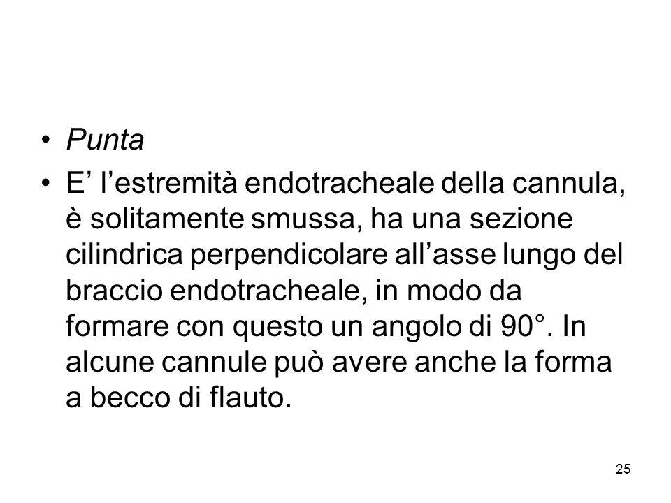 Punta E lestremità endotracheale della cannula, è solitamente smussa, ha una sezione cilindrica perpendicolare allasse lungo del braccio endotracheale, in modo da formare con questo un angolo di 90°.