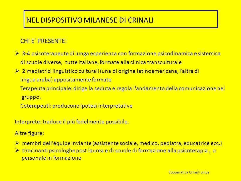 3-4 psicoterapeute di lunga esperienza con formazione psicodinamica e sistemica di scuole diverse, tutte italiane, formate alla clinica transculturale