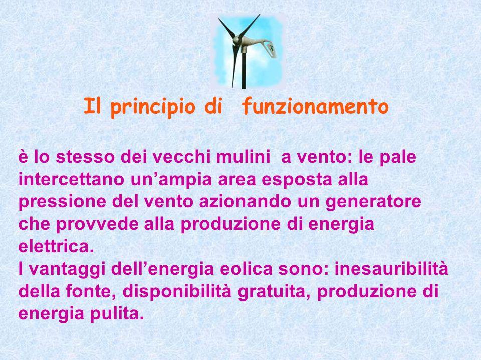 Il principio di funzionamento è lo stesso dei vecchi mulini a vento: le pale intercettano unampia area esposta alla pressione del vento azionando un g