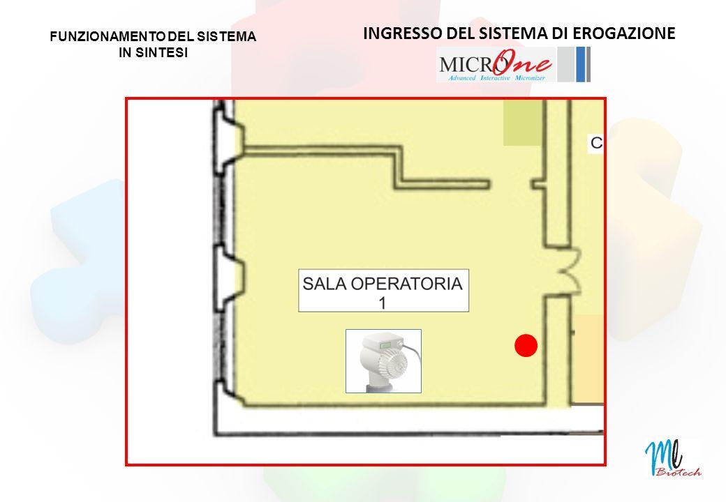 INGRESSO DEL SISTEMA DI EROGAZIONE FUNZIONAMENTO DEL SISTEMA IN SINTESI