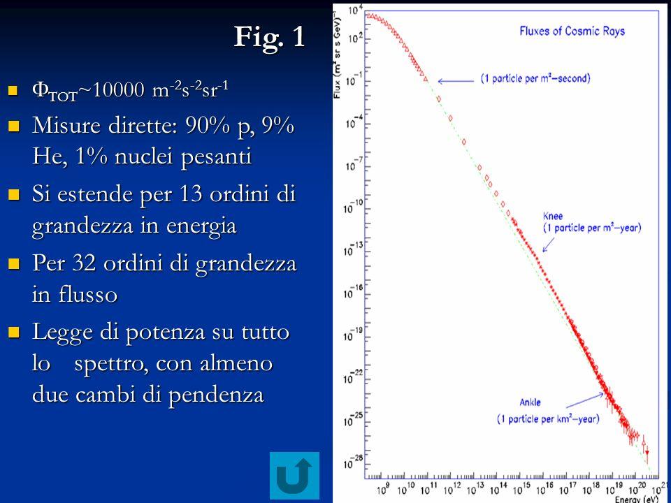 13 Fig. 1 TOT ~10000 m -2 s -2 sr -1 TOT ~10000 m -2 s -2 sr -1 Misure dirette: 90% p, 9% He, 1% nuclei pesanti Misure dirette: 90% p, 9% He, 1% nucle