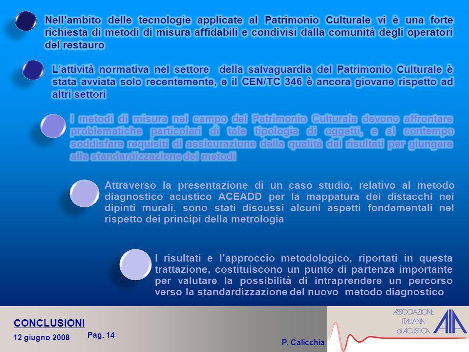 P. Calicchia 12 giugno 2008 CONCLUSIONI Pag.