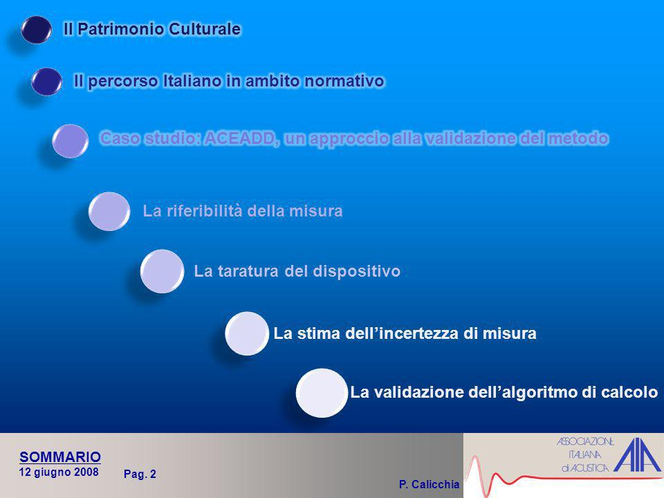 P. Calicchia 12 giugno 2008 SOMMARIO Pag.