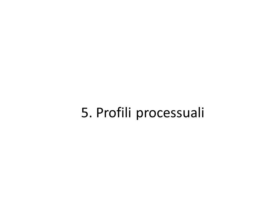 5. Profili processuali