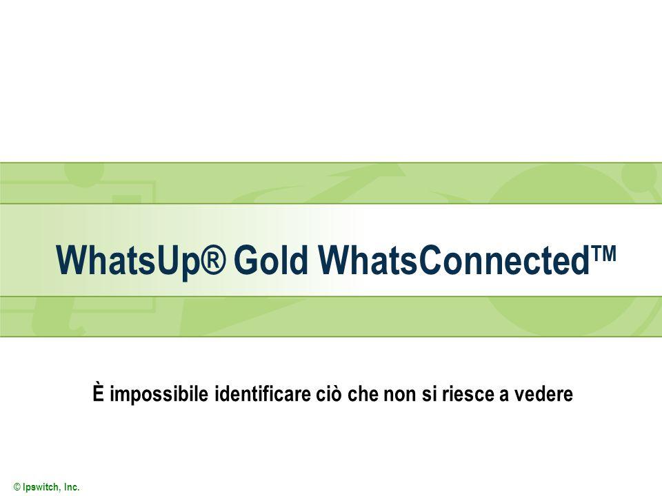 © Ipswitch, Inc. WhatsUp® Gold WhatsConnected TM È impossibile identificare ciò che non si riesce a vedere