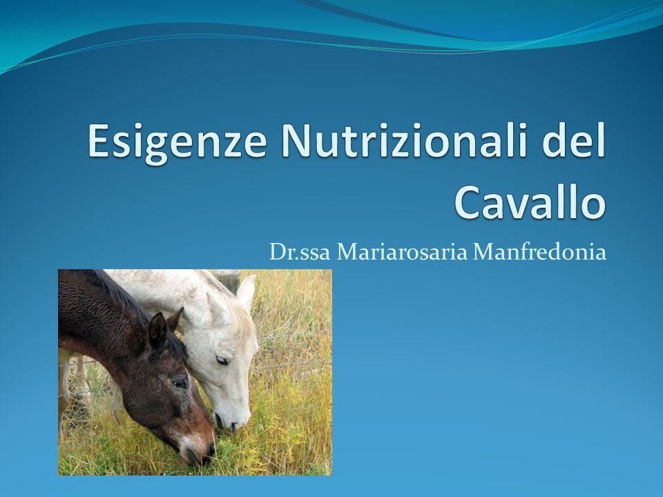 Esigenze Nutrizionali del Cavallo Nutrire adeguatamente il cavallo significa saper adeguare gli alimenti ai diversi fabbisogni senza causare problemi metabolici e digestivi.