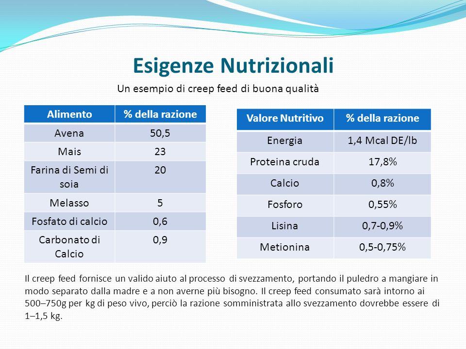 Esigenze Nutrizionali Un esempio di creep feed di buona qualità Alimento% della razione Avena50,5 Mais23 Farina di Semi di soia 20 Melasso5 Fosfato di calcio0,6 Carbonato di Calcio 0,9 Valore Nutritivo% della razione Energia1,4 Mcal DE/lb Proteina cruda17,8% Calcio0,8% Fosforo0,55% Lisina0,7-0,9% Metionina0,5-0,75% Il creep feed fornisce un valido aiuto al processo di svezzamento, portando il puledro a mangiare in modo separato dalla madre e a non averne più bisogno.