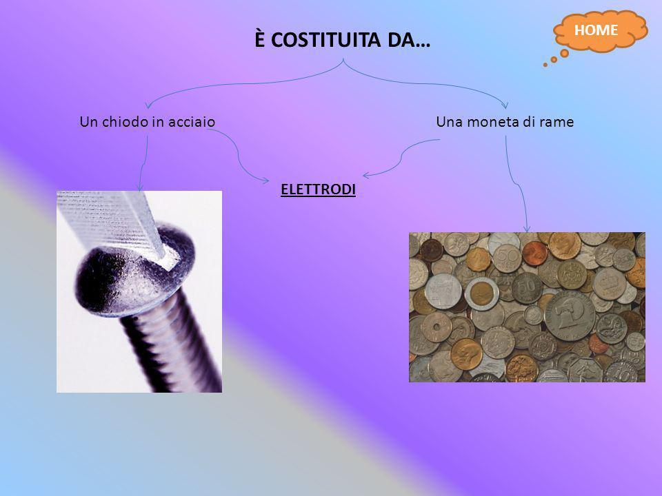 È COSTITUITA DA… Un chiodo in acciaioUna moneta di rame ELETTRODI HOME