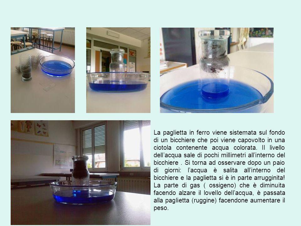La paglietta in ferro viene sistemata sul fondo di un bicchiere che poi viene capovolto in una ciotola contenente acqua colorata.