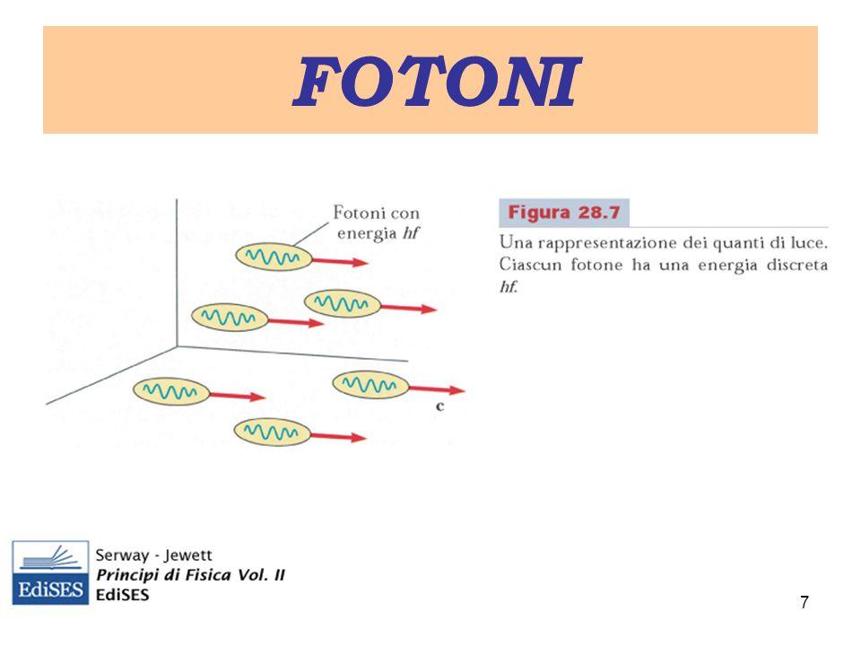 FOTONI 7