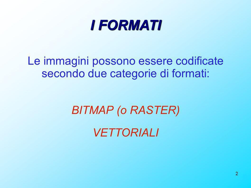 2 I FORMATI Le immagini possono essere codificate secondo due categorie di formati: BITMAP (o RASTER) VETTORIALI