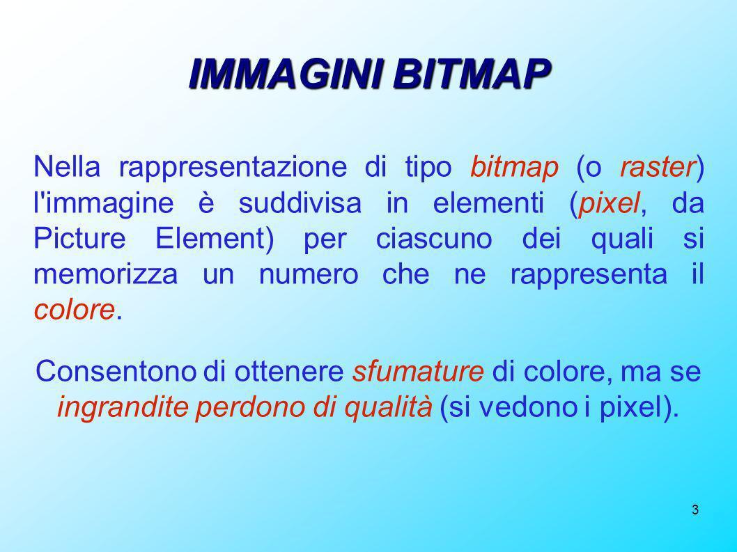 3 IMMAGINI BITMAP Nella rappresentazione di tipo bitmap (o raster) l'immagine è suddivisa in elementi (pixel, da Picture Element) per ciascuno dei qua