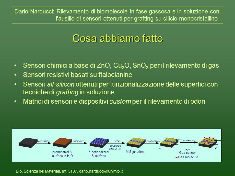 Dip.Scienza dei Materiali, int.