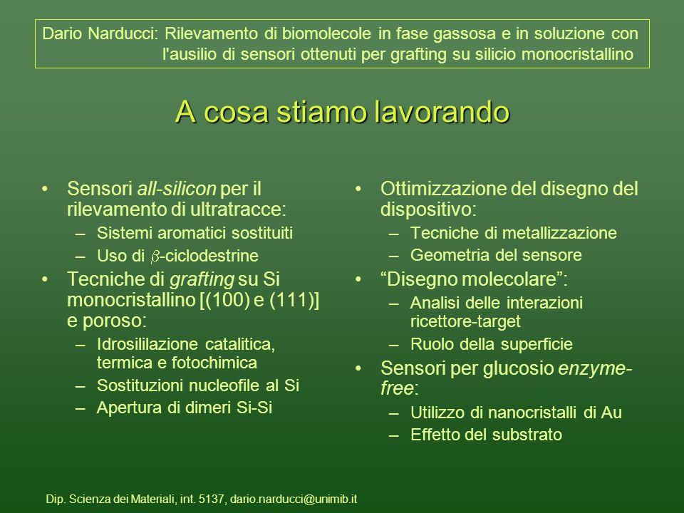 Dip. Scienza dei Materiali, int.
