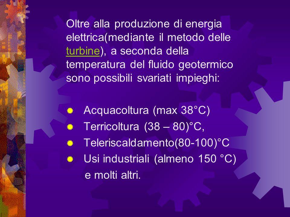 Oltre alla produzione di energia elettrica(mediante il metodo delle turbine), a seconda della temperatura del fluido geotermico sono possibili svariati impieghi: turbine Acquacoltura (max 38°C) Terricoltura (38 – 80)°C, Teleriscaldamento(80-100)°C Usi industriali (almeno 150 °C) e molti altri.