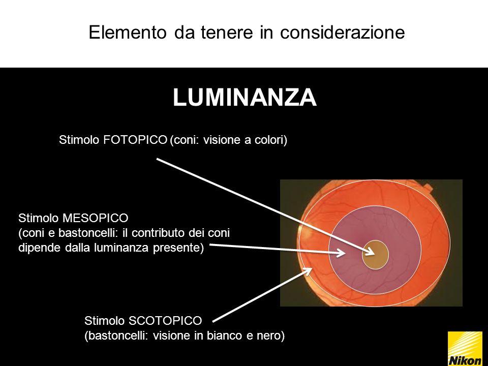 Elemento da tenere in considerazione LUMINANZA Stimolo SCOTOPICO (bastoncelli: visione in bianco e nero) Stimolo MESOPICO (coni e bastoncelli: il contributo dei coni dipende dalla luminanza presente) Stimolo FOTOPICO (coni: visione a colori)