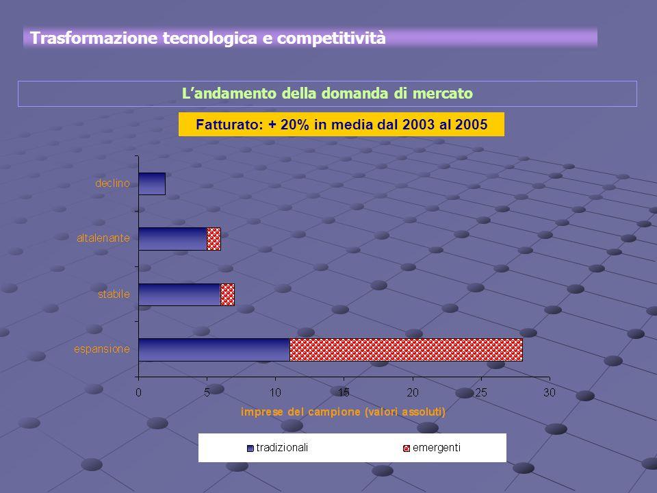 Landamento della domanda di mercato Trasformazione tecnologica e competitività Fatturato: + 20% in media dal 2003 al 2005