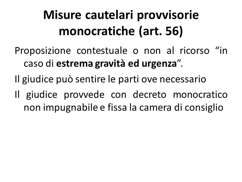 Misure cautelari provvisorie monocratiche (art.