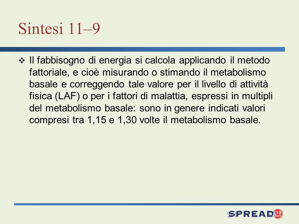 Sintesi 11–9 Il fabbisogno di energia si calcola applicando il metodo fattoriale, e cioè misurando o stimando il metabolismo basale e correggendo tale