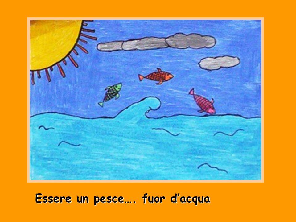 Essere un pesce…. fuor dacqua