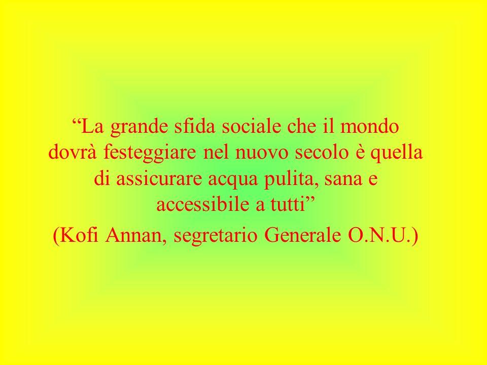 La grande sfida sociale che il mondo dovrà festeggiare nel nuovo secolo è quella di assicurare acqua pulita, sana e accessibile a tutti (Kofi Annan, s