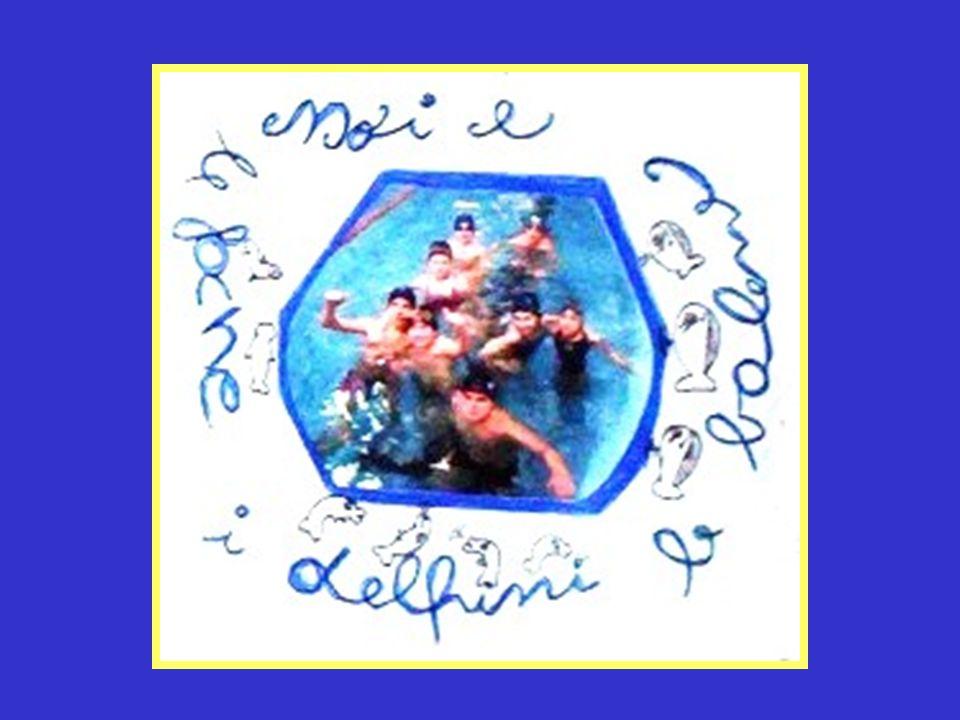 In piscina Mentre nuotavo a cavallo dello spaghetto mi guardavo intorno:cinque corsie, noi eravamo nella prima, il colore dominante il blu,altri colori,tutti vivaci,intorno;su tutto, il rumore dolce e continuo dellacqua che si muoveva sui nostri corpi:come è bello andare in piscina!(Chiara) Lesperienza della piscina per me è stata un po dura perché avevo paura dellacqua, ma con il tempo ho superato questo ostacolo.