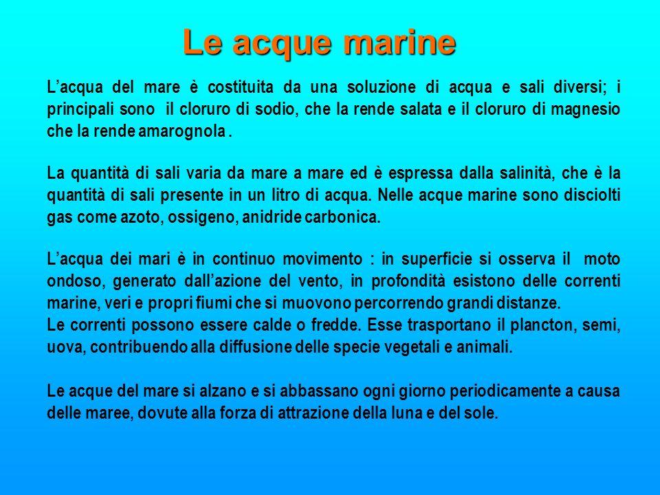 Le acque marine Lacqua del mare è costituita da una soluzione di acqua e sali diversi; i principali sono il cloruro di sodio, che la rende salata e il