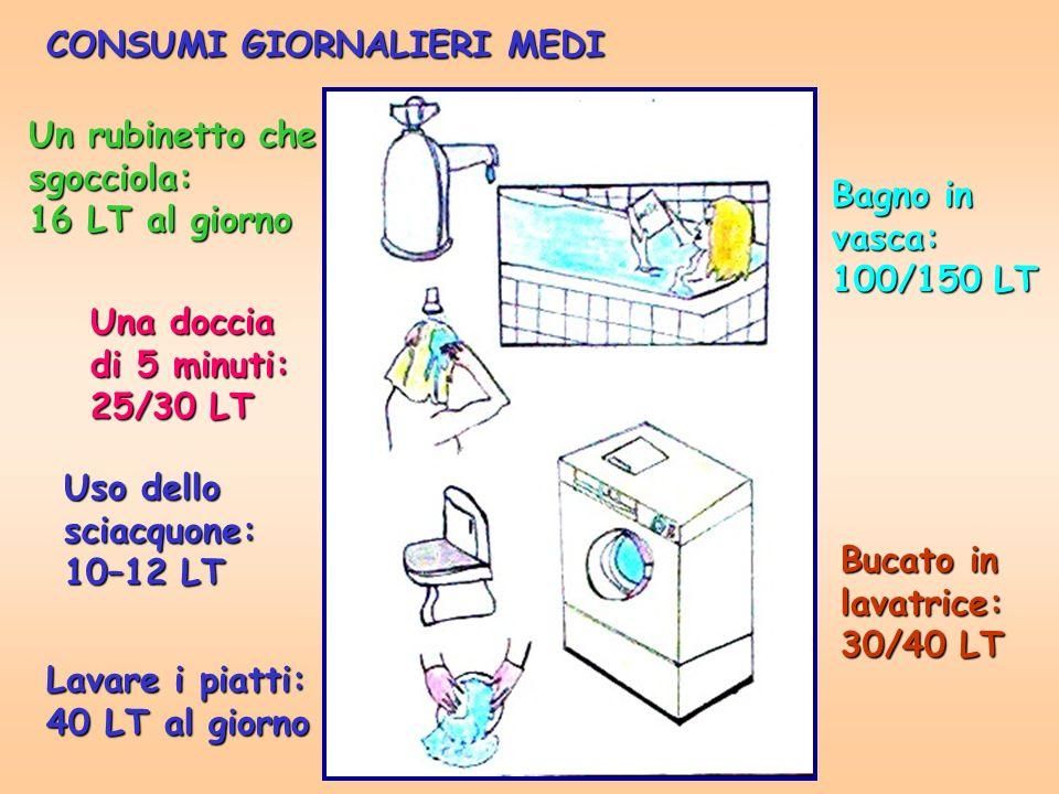 Un rubinetto che sgocciola: 16 LT al giorno Una doccia di 5 minuti: 25/30 LT Uso dello sciacquone: 10–12 LT Lavare i piatti: 40 LT al giorno Bagno in